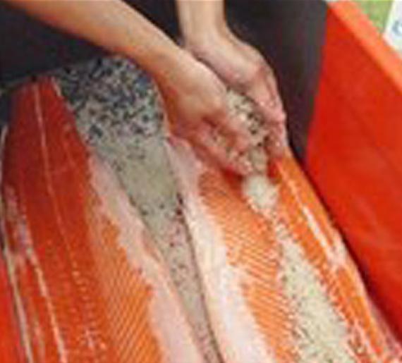 salage de saumon